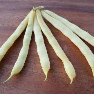 Pickling Beans